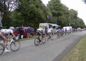 Bikes going past the koala 2011 tour de France