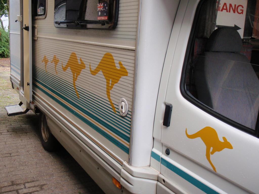 Kangaroos on the side of the motorhome