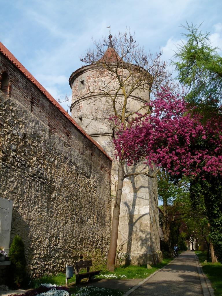 Nordlingen old wall
