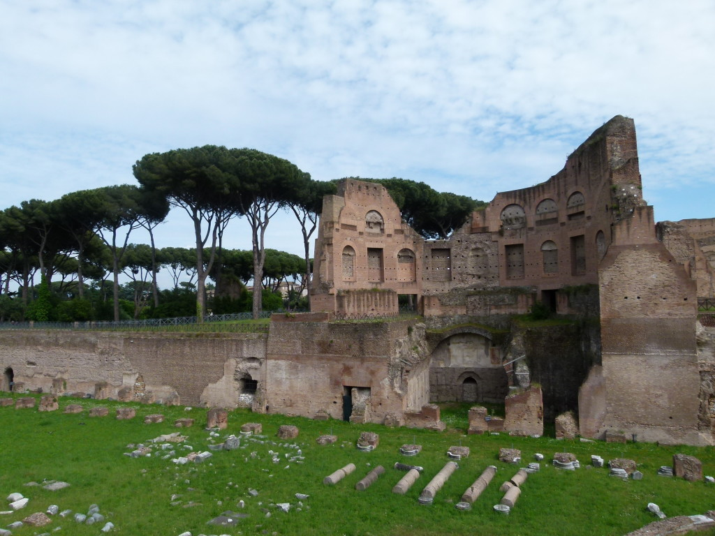 Palatine remains