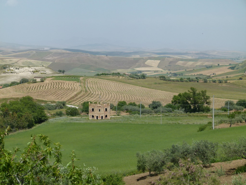 The countryside as we drove through the center of Sicily. Fields and rolling hills and plenty of gum trees as well.