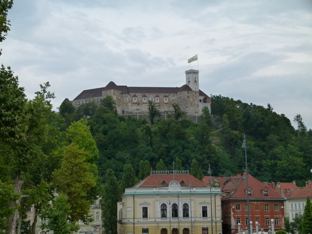 View of the castle on the hill.