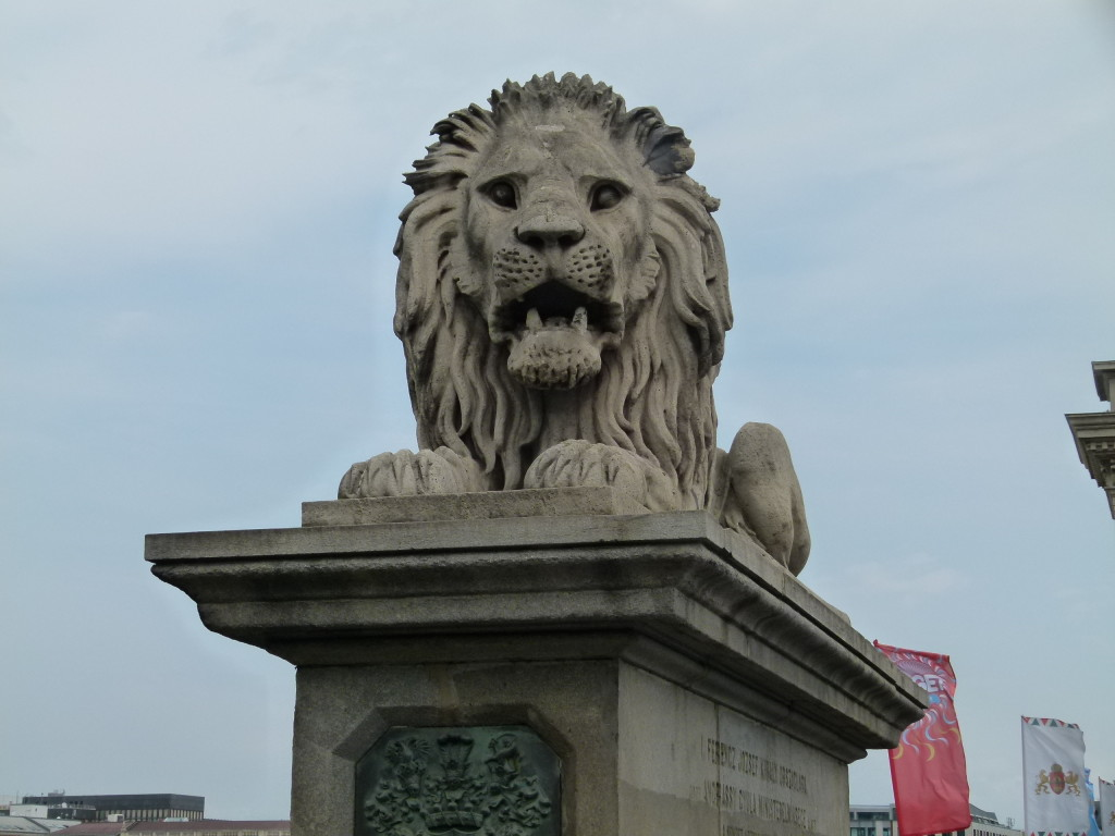 Lion statue on the chain bridge, Budapest