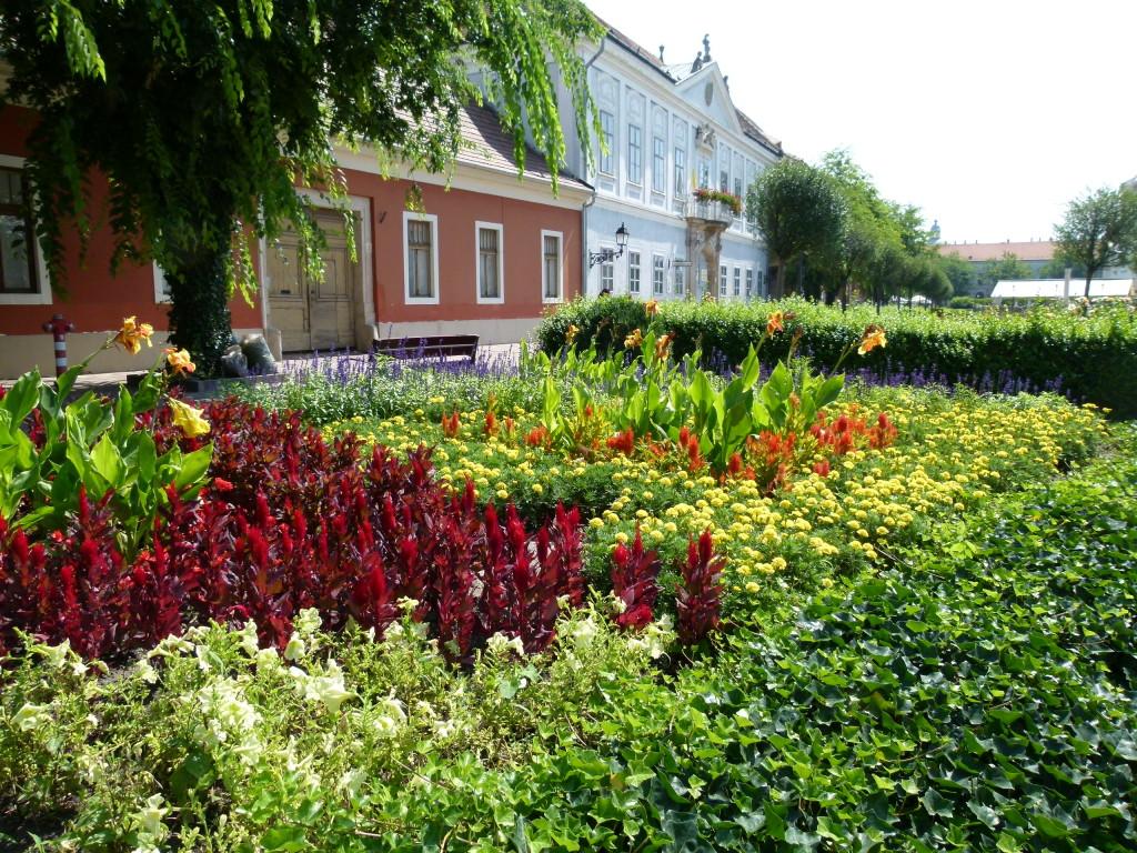 Colorful garden, Vac
