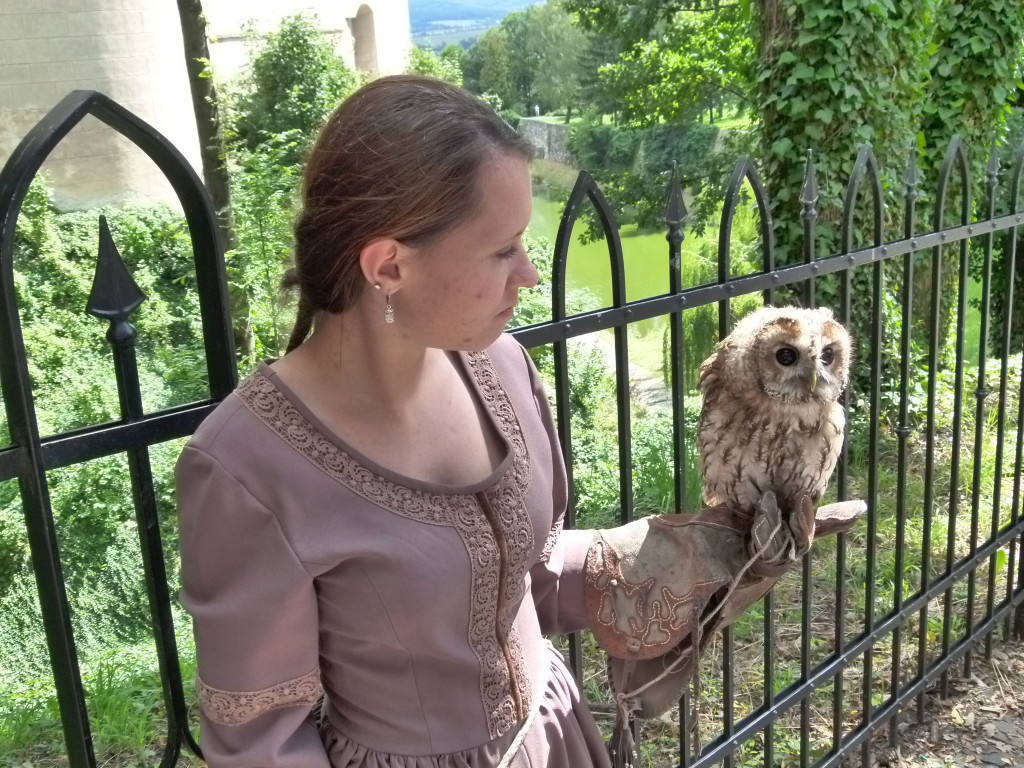 They had a bird of prey show near the castle. This lady was holding an owl.
