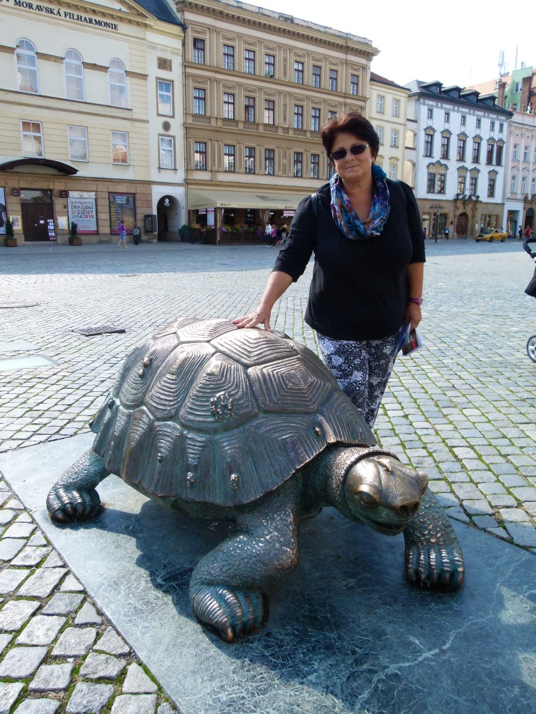 Turtle with Jenny