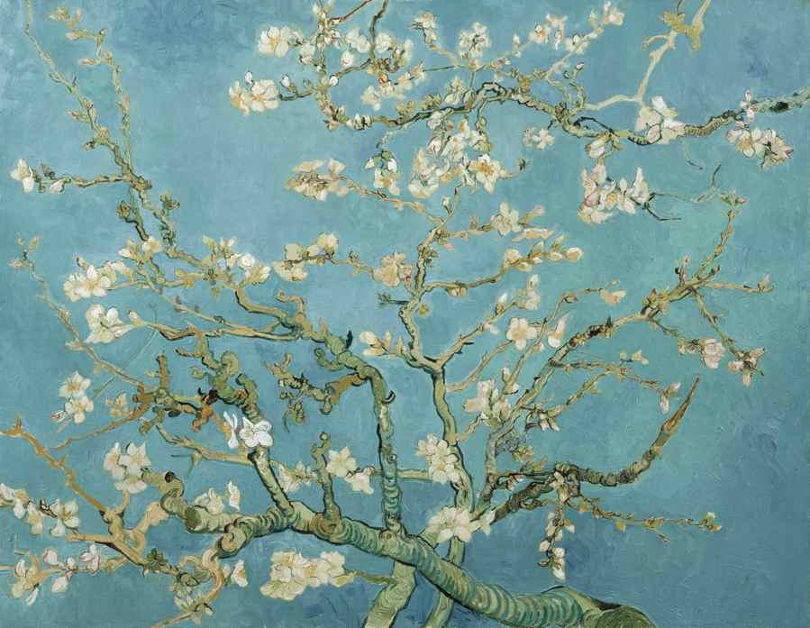 Maite-van-Dijk-Homa-Nasab-Interview-Vincent-Van-Gogh-Museum-Amsterdam-MuseumViews-14