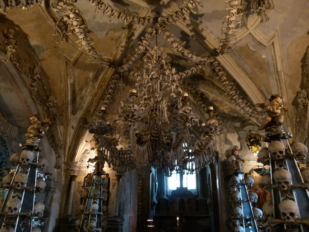 A chandelier made from bones. Not something you would have in your lounge room.