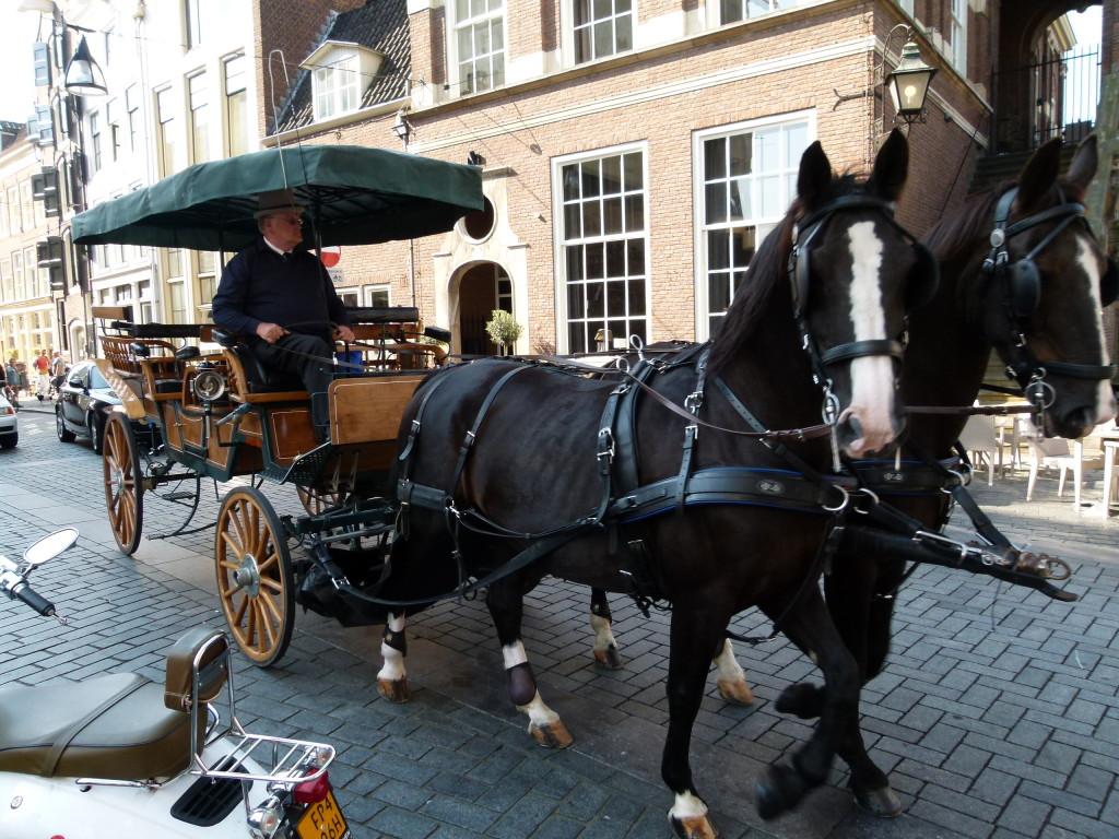 Zutphen tourist  buggy