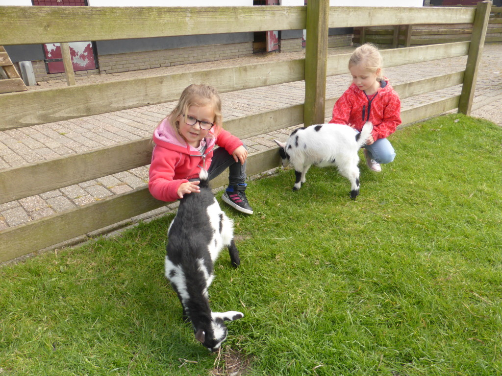 Jana and Shayenna at the animal farm.