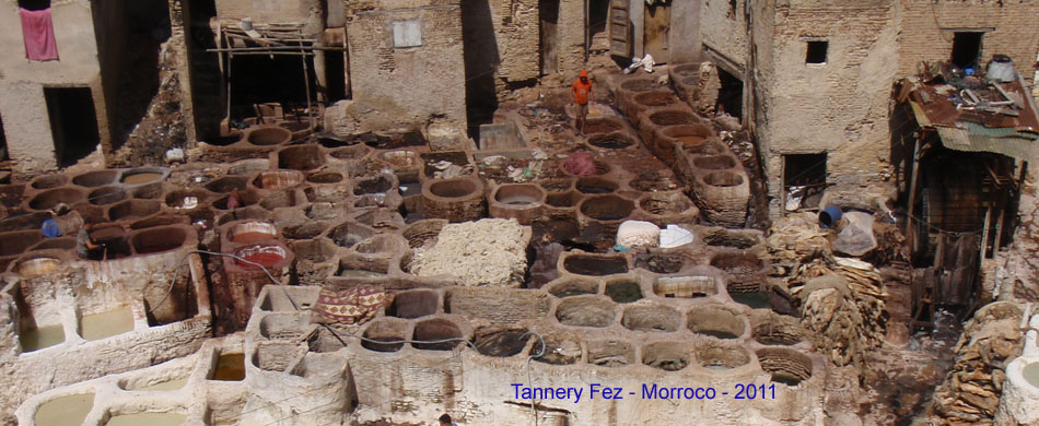Fes Tannery w