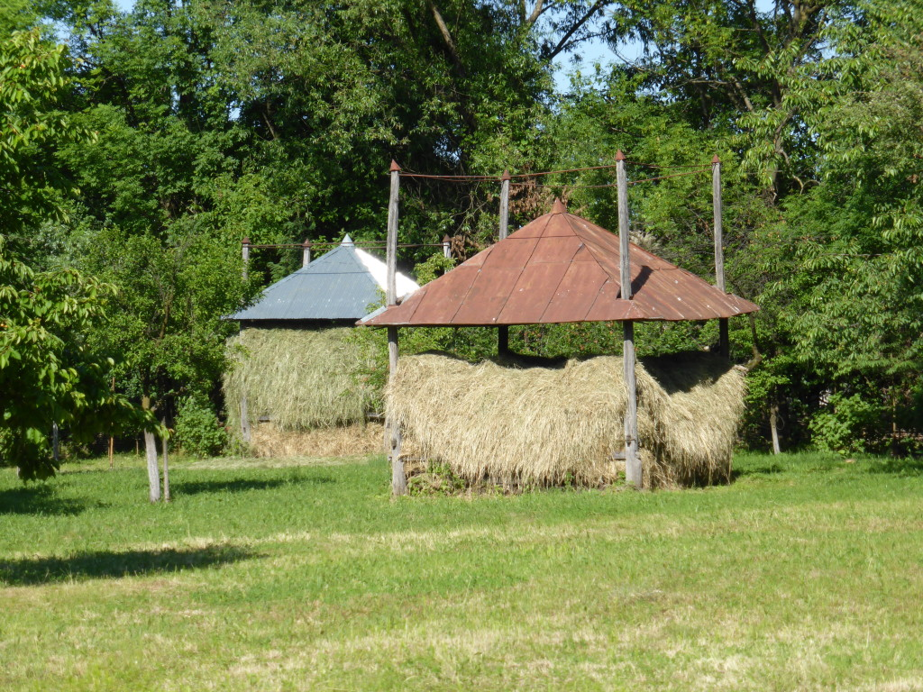 This is one way that the hay is stored. The roofs can go up or down according to the amount of hay.