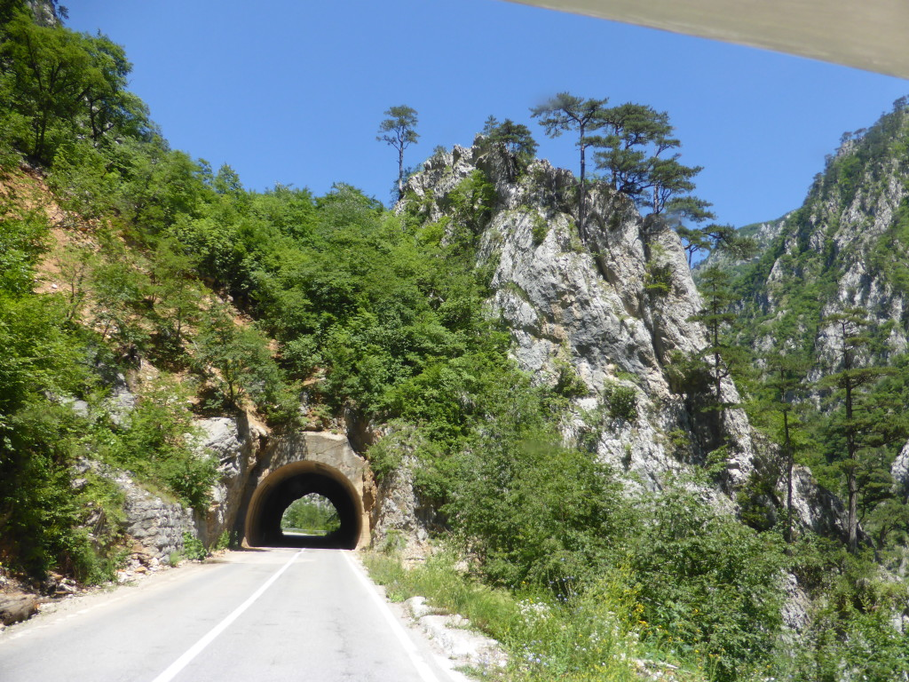 Plenty of small tunnels. Jenny like this photo because of the trees on the hill.