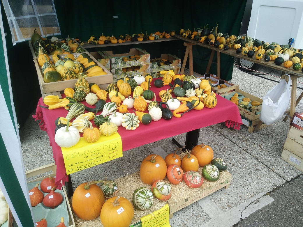 Pumpkins. Just one of the many different stalls at the market.